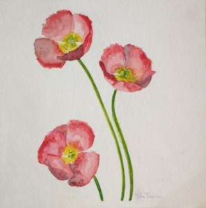 Ellen Van Treuren - watercolor - poppies