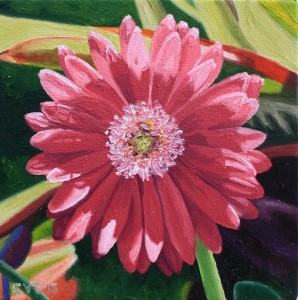 Ellen Van Treuren - cute little mini - pink gerber daisy