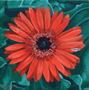 Ellen Van Treuren - cute little mini - red gerber daisy painting