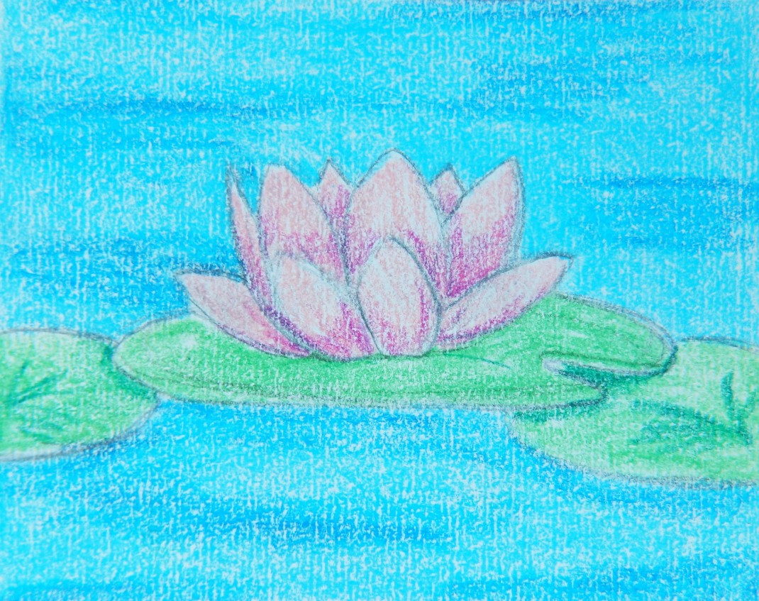 Water Lily concept