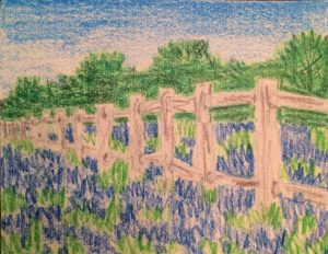 Bluebonnet Fence - Ellen Van Treuren - Painting with Ellen